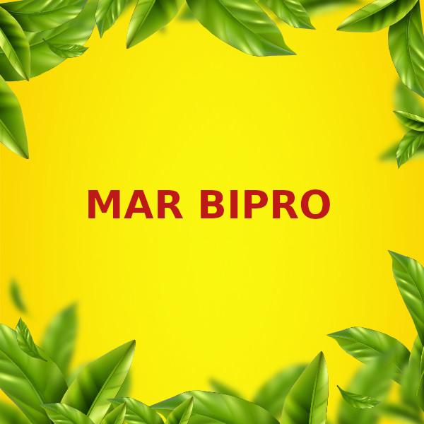 MAR BIPRO S.R.L.