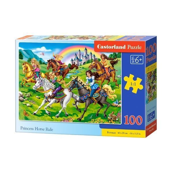 Puzzle 100 elemente